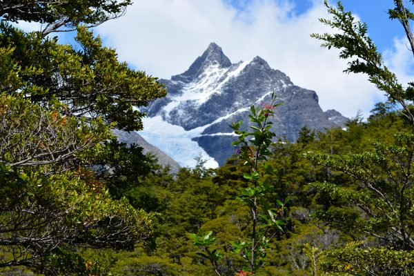 Cerro Mayo 3